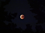 Penumbral Lunar Eclipse : জুনের প্রথম সপ্তাহে হতে চলেছে চন্দ্রগ্রহণ, রইল গ্রহণ সম্পর্কিত সমস্ত তথ্য