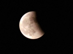 Lunar Eclipse 2020 : চন্দ্রগ্রহণের সময় কি খাওয়া নিরাপদ? খাবারের ক্ষেত্রে মেনে চলুন এই নিয়মগুলি