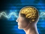 World Brain Day 2020 : আপনি কি ভুলে যাচ্ছেন? কীভাবে মস্তিষ্কের শক্তি বৃদ্ধি করবেন রইল তার কিছু টিপস্