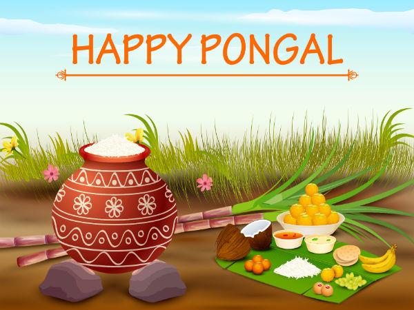 Facts About Makar Sankranti Pongal