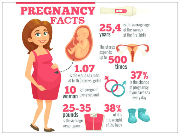 Facts About Pregnancy