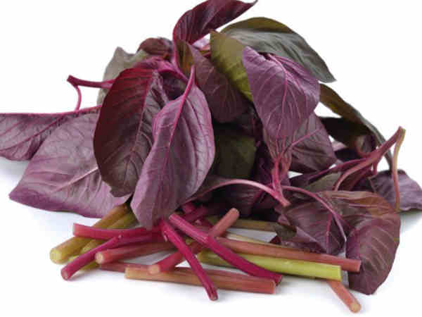 Benefits Of Red Spinach For Skin Hair And Health