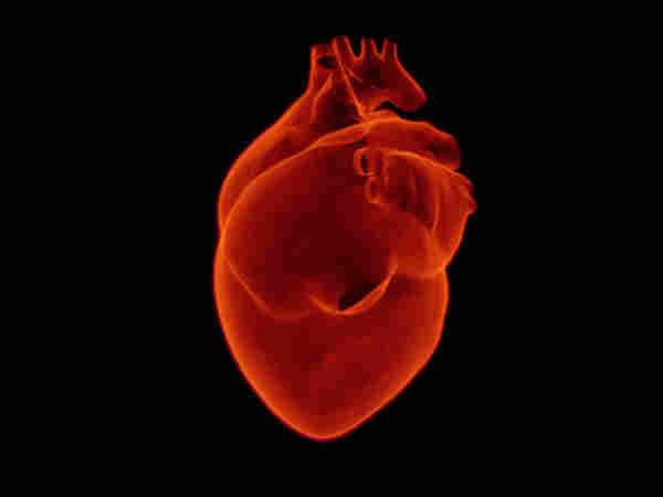 Healthy Heart Can Keep The Mind Sharp Says Study