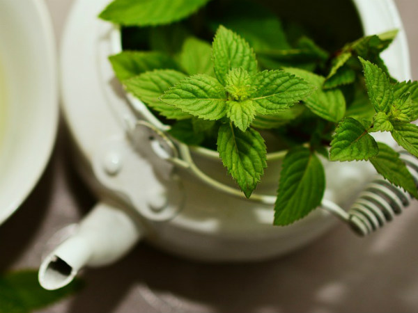 Impressive Health Benefits Of Mint