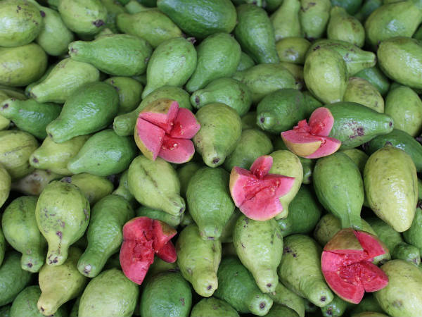 Amazing Guava Benefits Heart Healthy Weight Loss Friendly And More