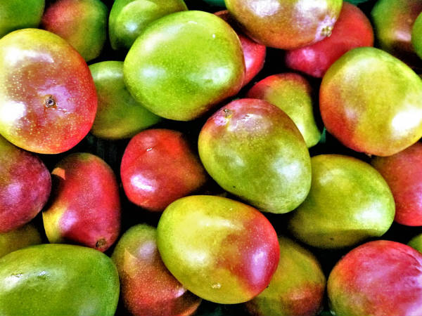 Amazing Benefits Of Mangoes For Skin Hair And Health