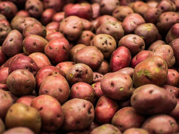 11 Impressive Benefits Of Sweet Potatoes