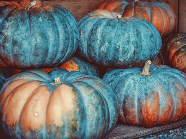 The Health Benefits Of Pumpkin And Its Power To Heal