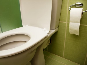 Disgusting Facts About Toilets