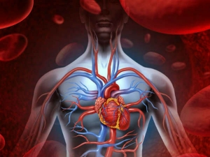 Consequences Of Untreated Blood Pressure