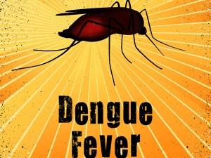 Things You Need To Know About Dengue