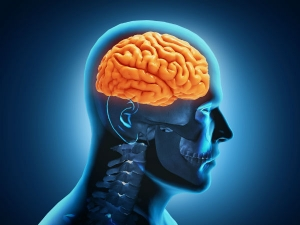 Ways To Make Your Brain More Efficient