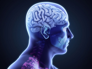 What Happens During A Brain Hemorrhage