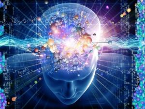 Brain Foods Your Brain Needs Fuel