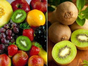 Foods To Increase Immunity During Pregnancy