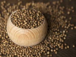 Amazing Health Benefits Of Coriander Seeds