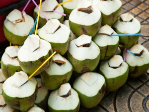 Must Have Foods For Summer Cucumber Coconut Water
