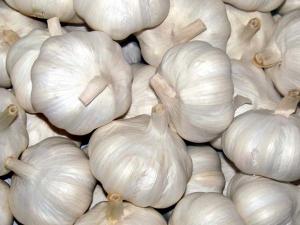 Eating Garlic Before Bed