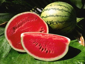 Can Diabetics Eat Watermelon