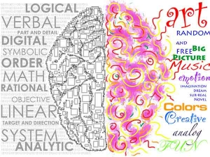 Are You Left Or Right Brained Which Brain You Are Using