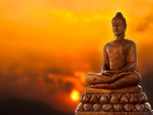 Buddha Loved To Diet