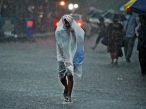 Ayurvedas Best Kept Secrets To Increase Immunity This Monsoon