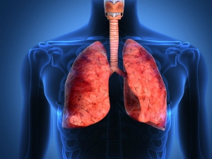 Symptoms Of A Lung Infection