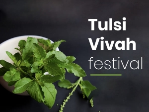 Tulsi Vivah 2020 Know About The Festival And Its Significance
