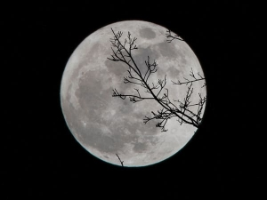 Lunar Eclipse January Date Time And Sutak Kaal