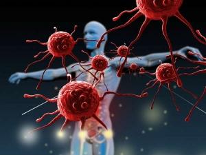 Coronavirus Foods That Can Help Boost Your Immunity