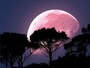Super Pink Moon 2020 Date Timings And When To Watch In India
