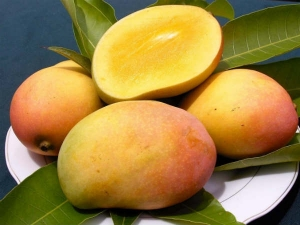 Mango May Help Protect You From Ultraviolet Radiation