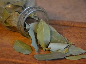 Beauty Benefits Of Bay Leaf