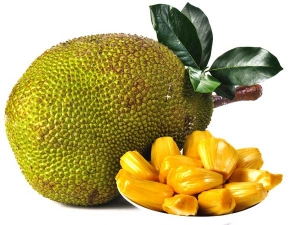 Health Benefits Of Jackfruit During Pregnancy