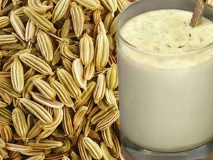 Benefits Of Consuming Fennel Seeds Milk