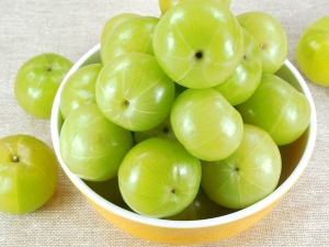 Benefits Of Eating Amla During Pregnancy
