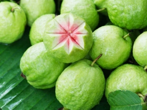 Health Benefits Of The Humble Guava