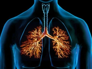 Drinks That Can Heal Your Lungs Naturally
