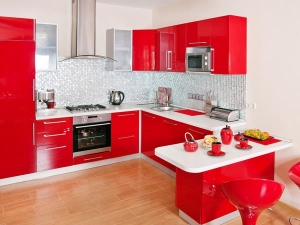 Vastu Tips Do Not Keep These Things In The Kitchen In Bengali