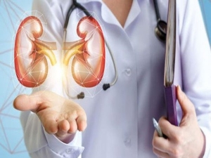 Eat These Foods To Keep Kidneys Healthy