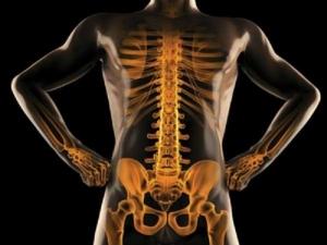 Foods That Can Improve Bone Health