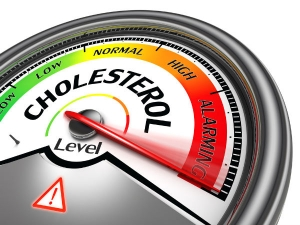 Signs Of The High Cholesterol In Legs In Bengali